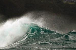 Ocean-Odyssey-whale-watching-knysna-24