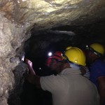 millwood gold mines, knysna forests, knysna forest tours