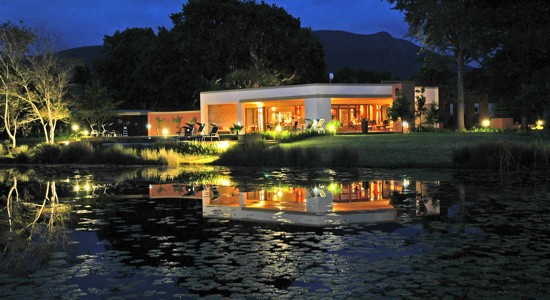 Lily Pond: queen of the Garden Route's gardens